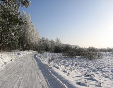 Jest szansa na śnieżne ferie. Nad Polskę nadciąga niż z północy