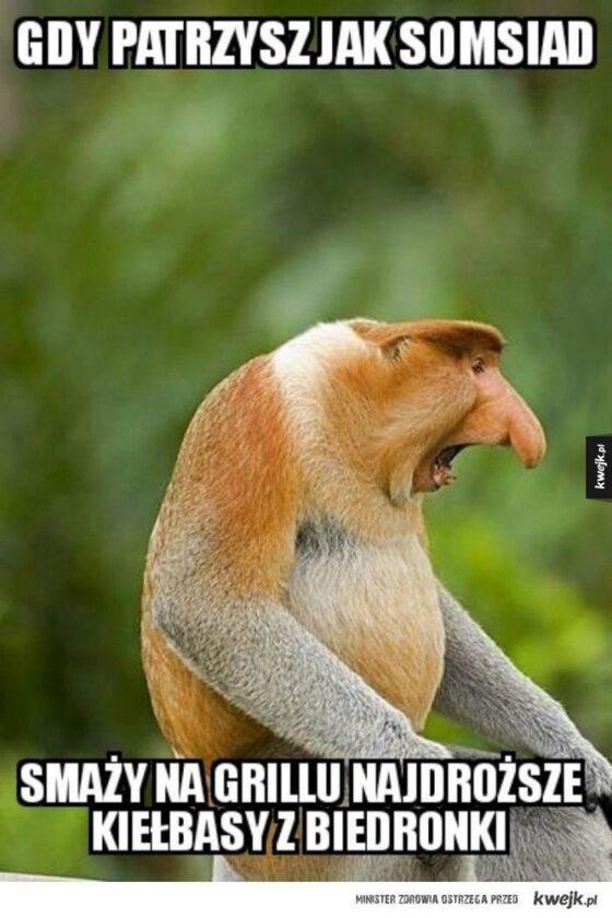 Mem nawiązujący do majówki