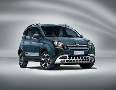 Nowy Fiat Panda Cross, Life i Sport