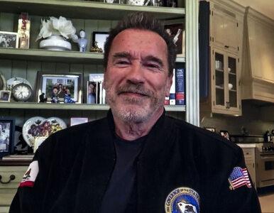 Filmowy Terminator zagra w serialu Netfliksa! Arnold Schwarzenegger jako...
