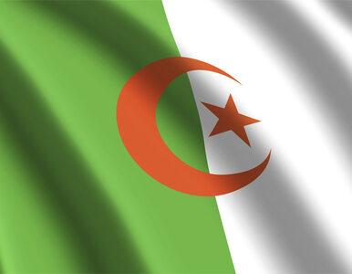 Algieria ma nowego premiera