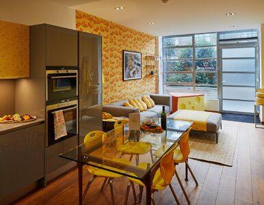 Pierwszy na świecie serowy apartament. Pobyt jest darmowy