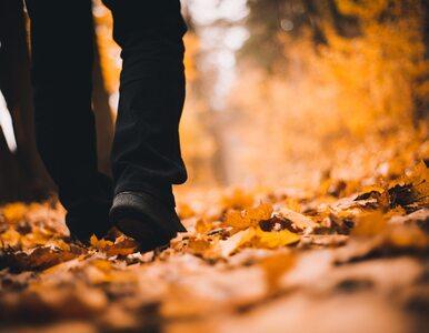 Jesienne spacery na odchudzanie. Jakie powinny mieć zasady?
