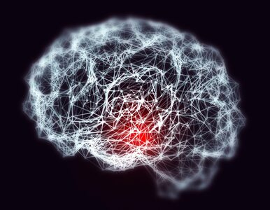 Naukowcy z Litwy stworzyli algorytm, który wykrywa alzheimera z niemal...