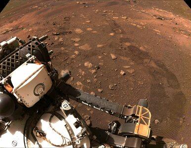 Łazik Perseverance już przemierza Marsa. Przejechał ponad 70 metrów i...