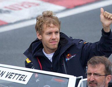 Vettel mistrzem świata Formuły 1