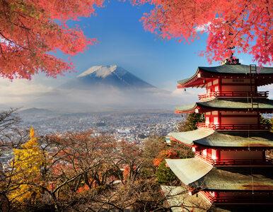 Dieta japońska – czy pozwala skutecznie schudnąć?