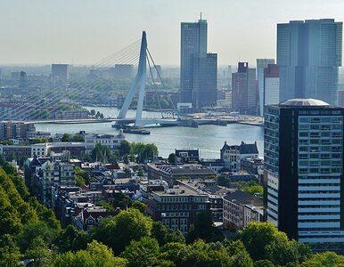 Kanały Rotterdamu lepsze niż ulice Warszawy? Ambasador RP reaguje na...