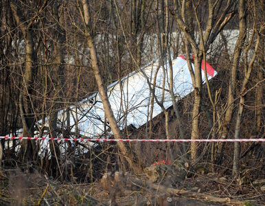 """Konsultant ds. lotniczych filmu """"Smoleńsk' ma postawione zarzuty w..."""