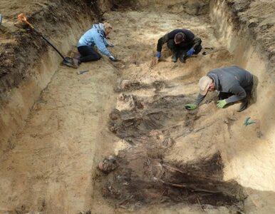 300 ciał, część bez głów. Trwa wyjaśnianie makabrycznego odkrycia w...