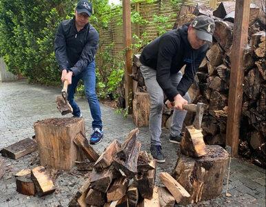 Posłowie KO zabrali się za rąbanie drewna. Wywołali lawinę... śmiechu