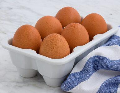 Dlaczego warto jeść jajka? O tym mogłeś nie wiedzieć