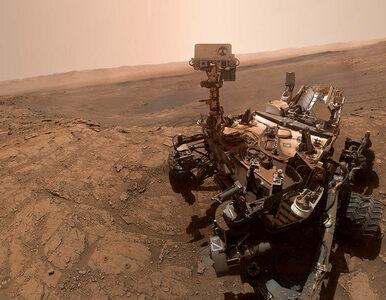 Łazik Curiosity przysłał selfie z Marsa. Dla NASA najcenniejsze jest...