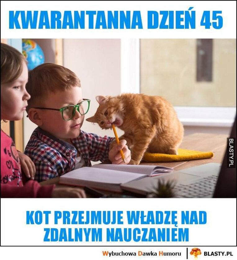 Memy o nauczaniu zdalnym