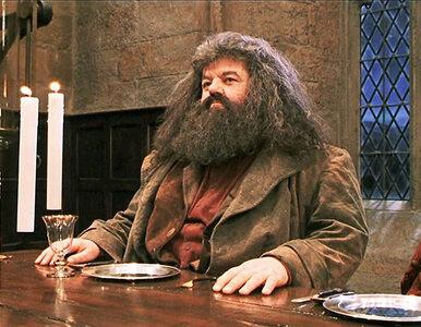 """""""Fantastyczne zwierzęta 3"""". W filmie pojawi się Tom Riddle i Hagrid?"""