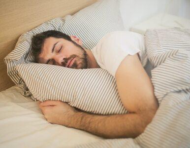 Naukowcy: Dobry sen zależy od... bakterii w jelitach