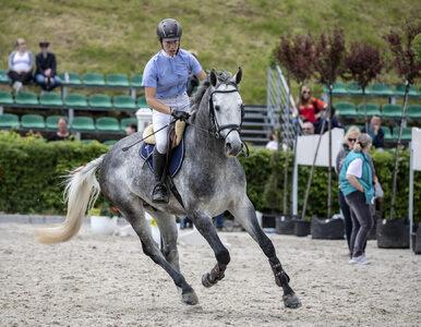 Zawody jeździeckie wróciły na dobre do Niepołomic