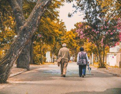 Tracisz odporność wraz z wiekiem? Są na to sposoby