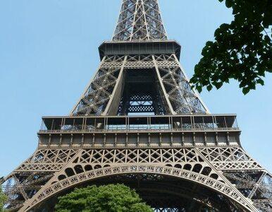 Niedoszły złodziej pomylił Paryż z Głogowem?