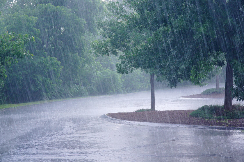 Wiatr, deszcz, zdj. ilustracyjne