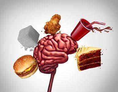 Jak nieprawidłowy poziom cholesterolu niszczy nasz mózg? Nowe odkrycie