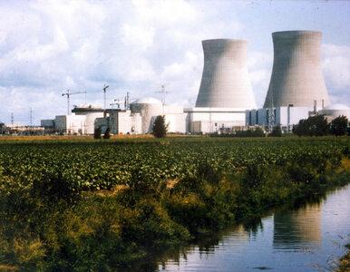Belgia boi się katastrofy nuklearnej? Mieszkańcy dostaną tabletki z jodem