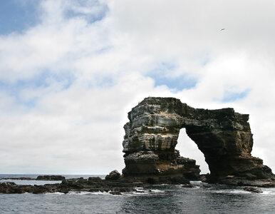 Znany widok z archipelagu Galapagos przeszedł do historii. Wszystko...