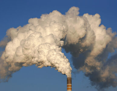 Szokujące dane WHO. 92 proc. mieszkańców Ziemi oddycha zanieczyszczonym...