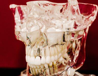 Dlaczego zęby mądrości pojawiają się dopiero w dorosłości? Naukowcy mają...