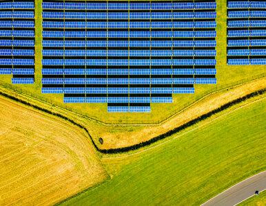 Zielone innowacje w regionie szansą dla idei zrównoważonego rozwoju
