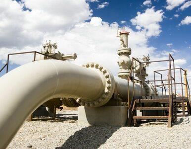 Nie tylko Gazprom. UOKiK za Nord Stream 2 surowo karze także pięć innych...
