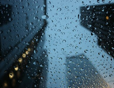 Środa z deszczem, ale ciepła. Jaka pogoda czeka nas w Wigilię?