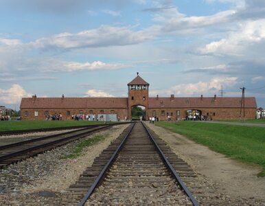 """Poruszające odkrycie w dziecięcych bucikach ofiar Auschwitz. """"Bardzo..."""