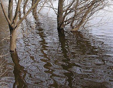 Podhale w wodzie po gwałtownej ulewie