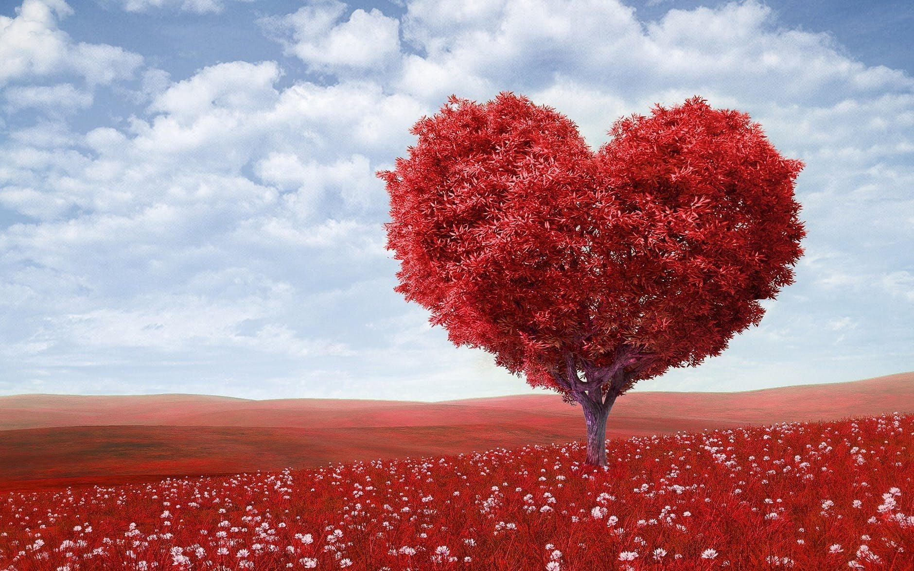 """""""Miłość jest grą. Kto pierwszy powie kocham - przegrywa"""". To słowa wypowiedziała:"""