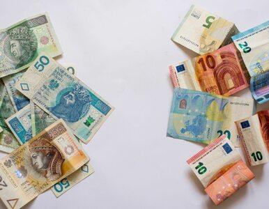 Europejska płaca minimalna w Polsce. Czy przedsiębiorcy ją udźwigną?