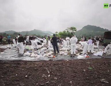 Sześć ton kokainy poszło z dymem w Panamie