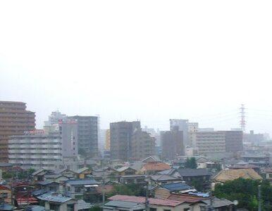 Symultaniczne eksplozje w Japonii. Lokalny festiwal odwołany