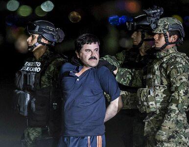 """Proces """"El Chapo"""". Świadek mówi o specjalnym pokoju, w którym mordowano..."""