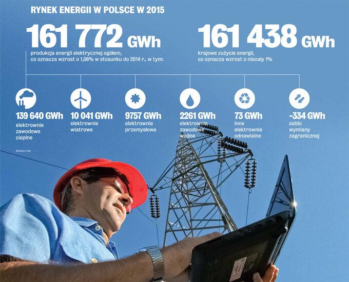 Rynek Energii wPolsce w2015