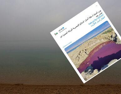 Woda w okolicy Morza Martwego zmieniła kolor. Wiele teorii ekspertów