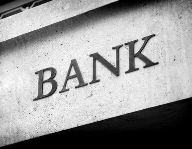NIK: Sektor bankowy jest stabilny, nie uniknięto jednak błędów w nadzorze