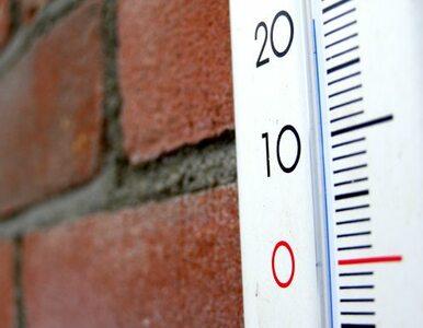Dziś 13 stopni Celsjusza - od jutra będzie zimno