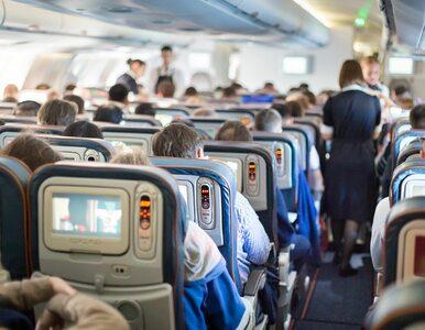Ceny biletów lotniczych sporo niższe. Dokąd wybierają się Polacy?