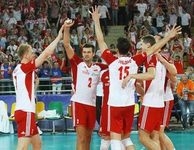 Liga Światowa: Polska znów tryumfuje