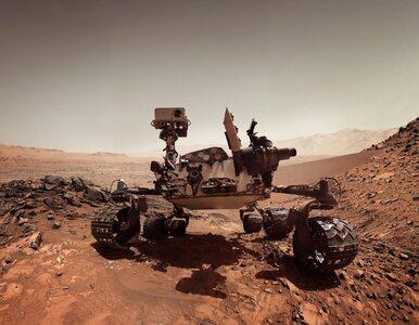 Były pracownik NASA: Życie na Marsie odkryliśmy już 40 lat temu