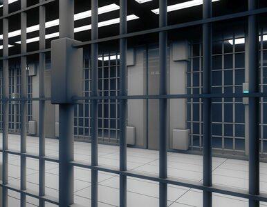 Praca dla więźniów? Rząd ma swój pomysł