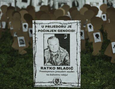 Masakra w Srebrenicy. Apelacja ws. dożywocia dla Ratko Mladicia