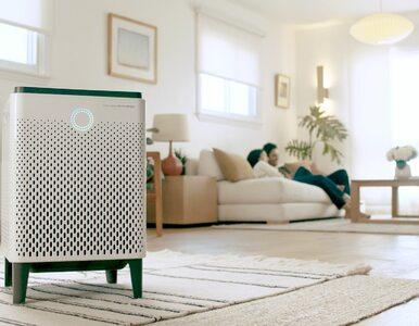 Na co zwrócić uwagę przy wyborze oczyszczacza powietrza?