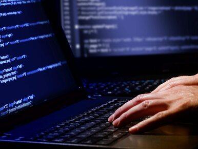 Raport: Polskie media społecznościowe pełne są fałszywych tożsamości
